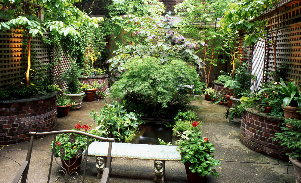 Urban gardening ideas for Urban garden design ideas