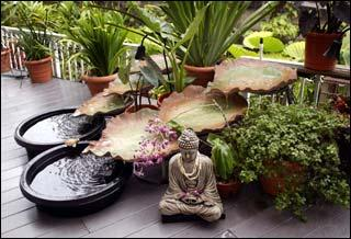 The Primary Aim Of A Feng Shui Garden Is To Create Harmony And Balance Within Embrace An Outdoor E This Should Be Done In Way That Follows