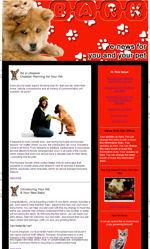 Pets & Vets Email Newsletter Template for Email Marketing