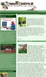Retail Email Newsletter Template for Email Marketing