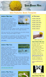 Basic Email Newsletter Template for Email Marketing