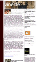 Side Image Style 2 Email Newsletter Template for Email Marketing